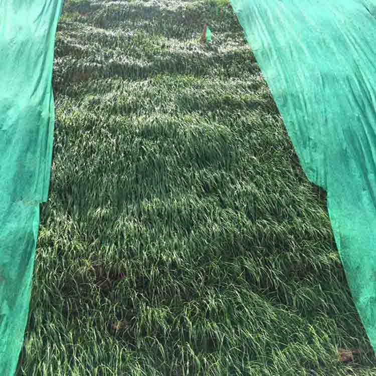 geotextile cloth 2